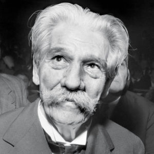 Albert Schweitzer Leadership Quotes