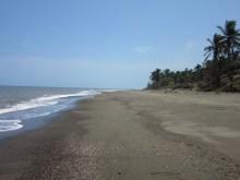 Playa El Puerto de Guarare1