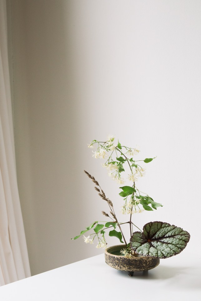 arrangement with clematis, rass and begonia. The Arrangement - Janneke Luursema