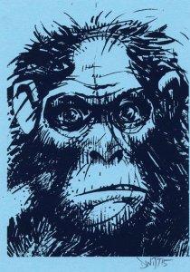 David Witt, Whimpering Ape