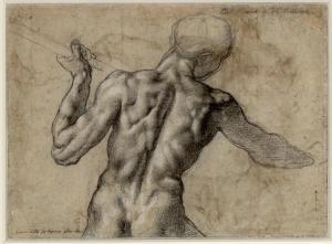 Michelangelo, Figure Study
