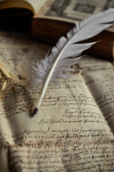 Parchment and quill B2