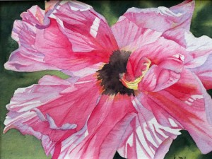 Pretty in Pink by Kathy Nay