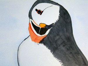 Puffin by Jocelyn Bichard