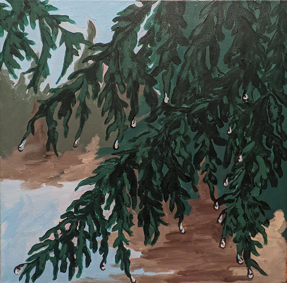 Soaking Cedar by Wendy Capp