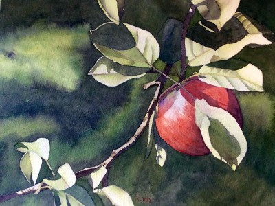 One Red Apple by Kathy Nay