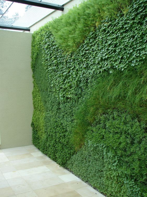 15+ Creative and Amazing DIY Vertical Garden That Will ... on Green Wall Patio id=27625
