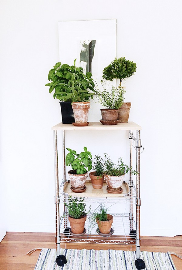 Beautiful And Most Creative DIY Plant Stand Ideas For ... on House Plant Stand Ideas  id=38438