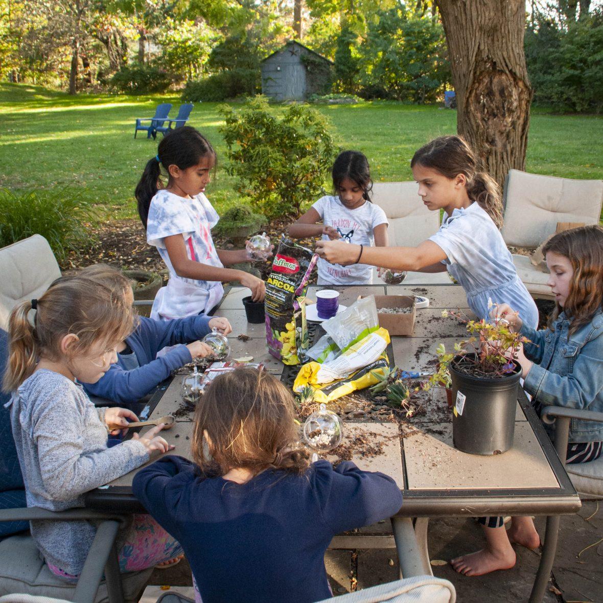 terrarium workshop enrichment program for students in bucks county pennsylvania
