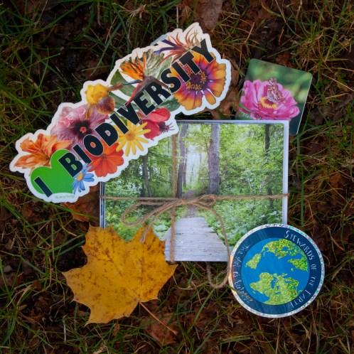 The Art of Ecology Gift Bundles