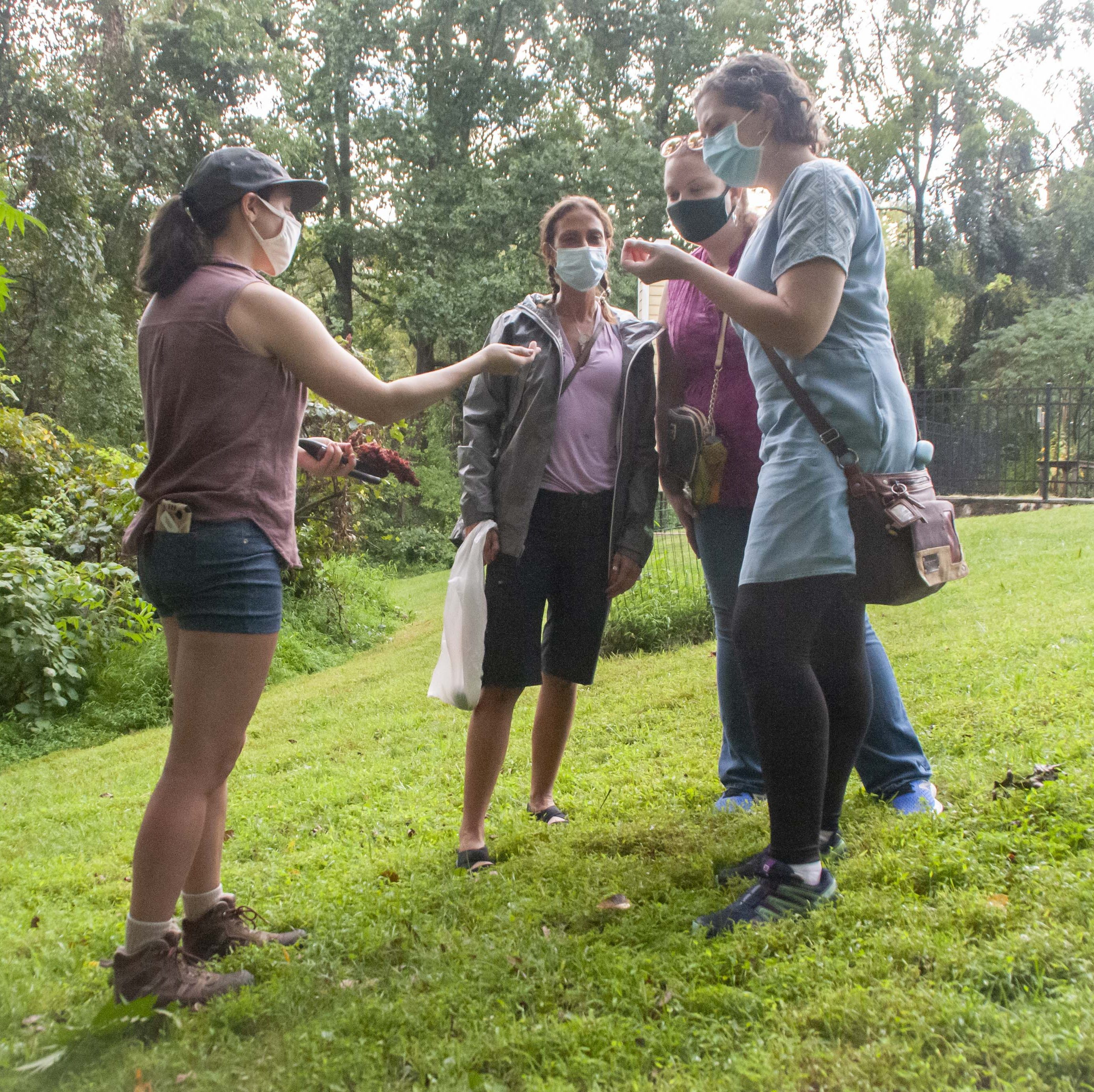 in-person Foraging Education for Adults