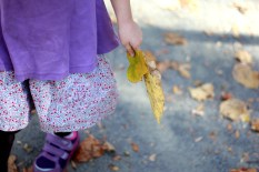 Lily collecting leaves I