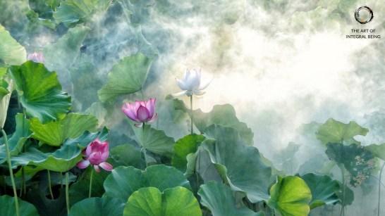 Lotus (Pink Green White)