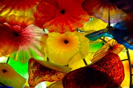 By Dale Chihuly