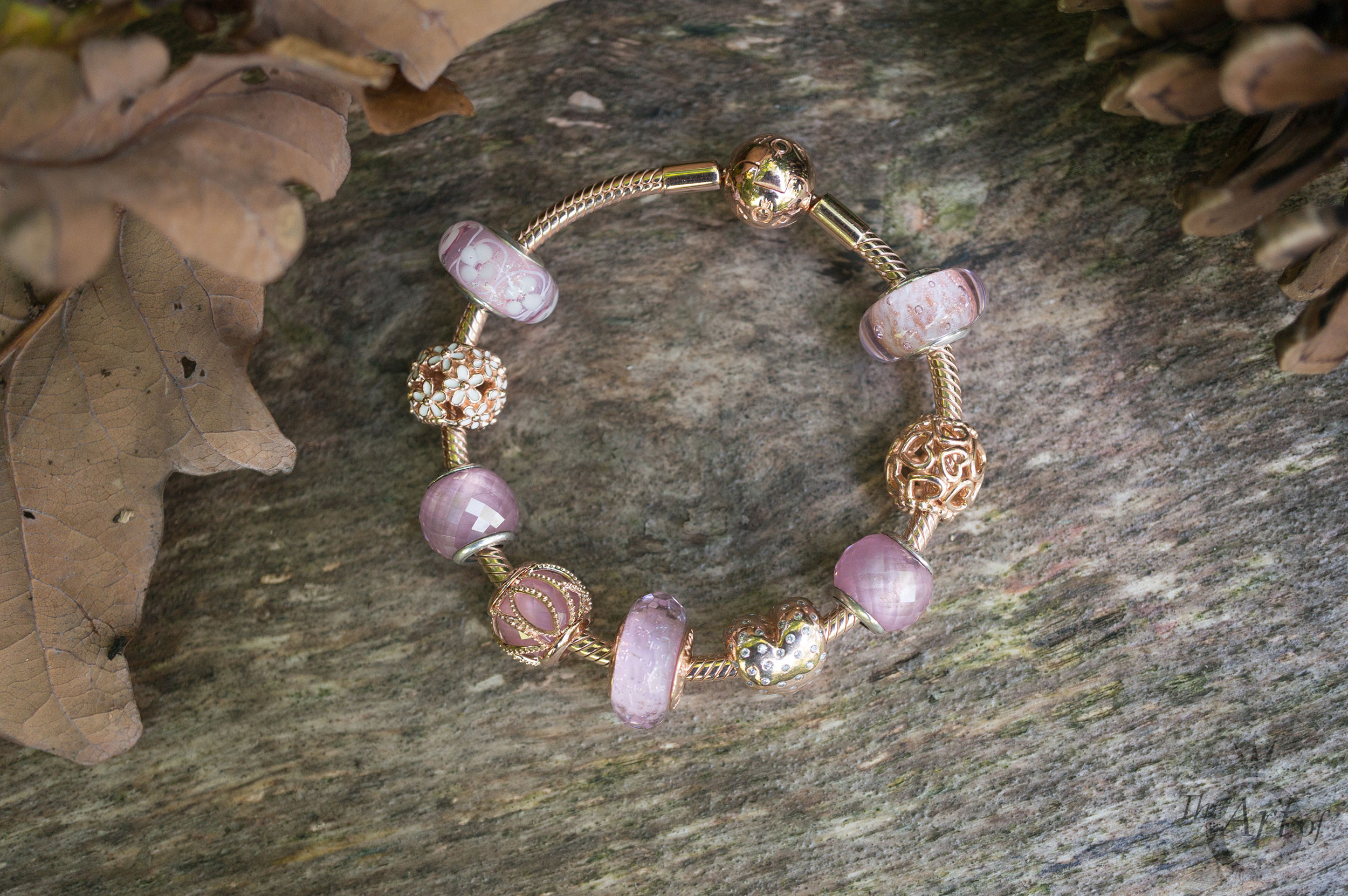 NEW REVIEW MOMENTS SMOOTH PANDORA ROSE BRACELET The Art