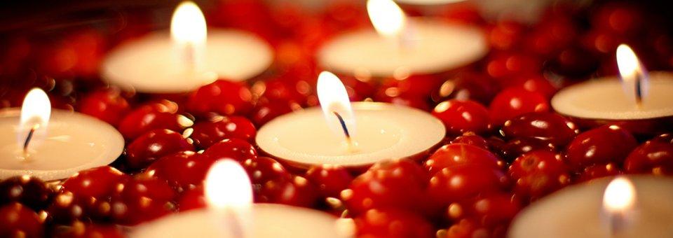 The Gratitude Attitude – Thanksgiving Leftovers