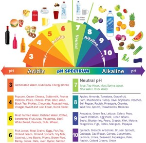 Understanding your body's pH and How an Acid or Alkaline