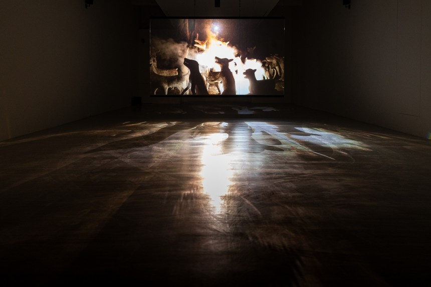 06_阿比查邦.韋拉斯塔古,《煙火(檔案)》,2014。單頻錄像裝置、玻璃。藝術家與臺北市立美術館提供。