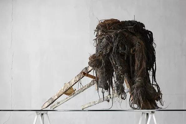 1963年,比利時登德爾蒙德),《Gorgo #5》,2005年,混合媒介(動物血液、馬毛、鐵、紙、著色木),87 X 116 X 85 厘米(圖片由Axel Vervoordt Gallery提供)
