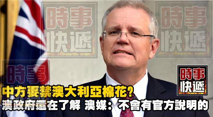 中方要禁澳大利亞棉花?澳政府還在了解,澳媒:不會有官方說明的