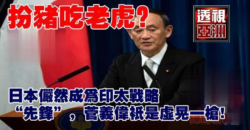 """扮豬吃老虎?日本儼然成為印太戰略""""先鋒"""",菅義偉只是虛晃一槍"""