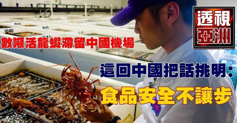 數噸活龍蝦滯留中國機場,這回中國把話挑明:食品安全不讓步