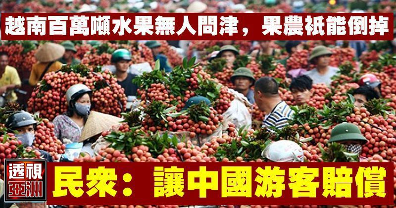 越南百萬噸水果無人問津,果農只能倒掉,民眾:讓中國遊客賠償