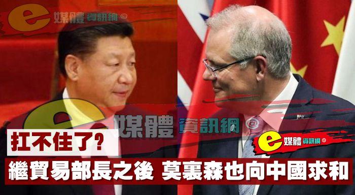 扛不住了?繼貿易部長之後,莫里森也向中國求和