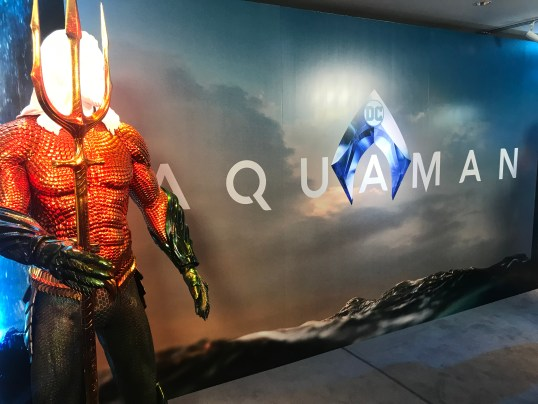 Aquaman Display - World Premiere Costume