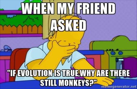 homer simpson monkeys evolution meme