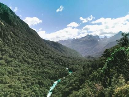 New Zealand_13