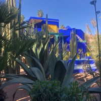 FIVE FACTS ON: Jardin Majorelle