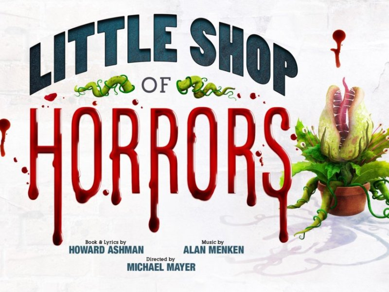 RUMOUR – LITTLE MIX TO JOIN LITTLE SHOP OF HORRORS REMAKE