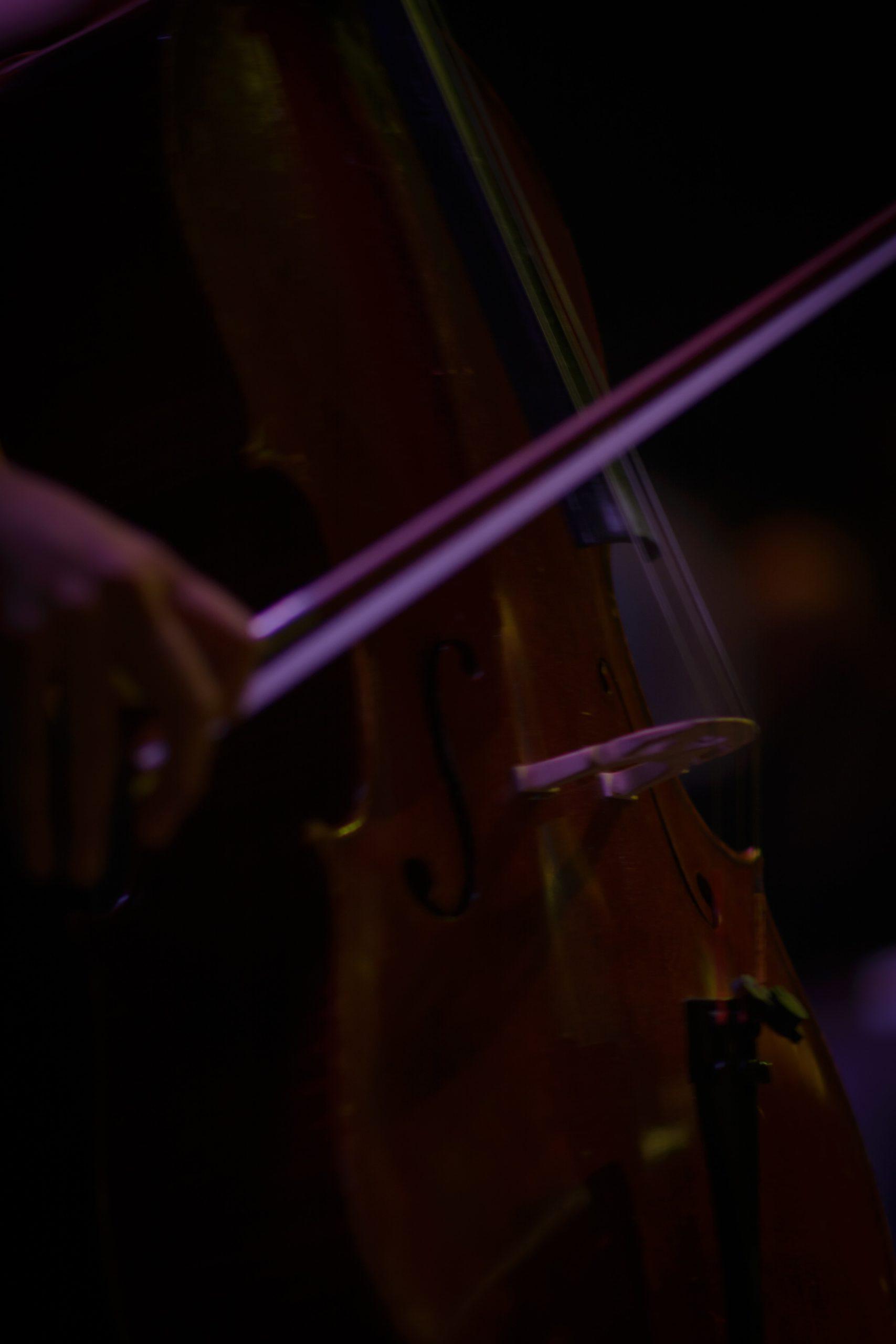 POUR PIECE DE THEATRE RECHERCHE MUSICIEN BASSE OU VIOLONCELLE