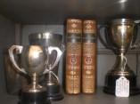 MF trophies & ribbons (6)
