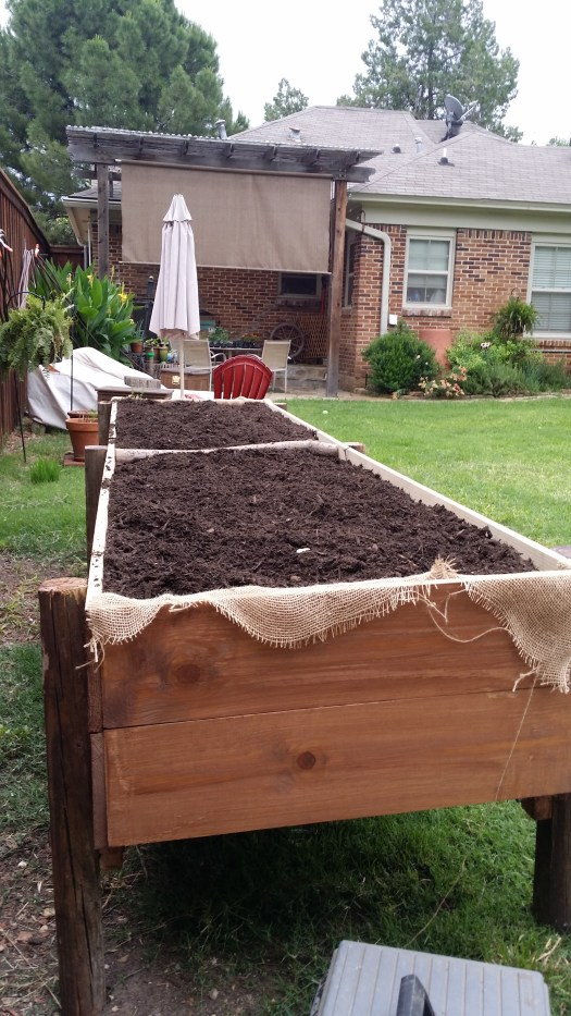tAB - raised garden (12)