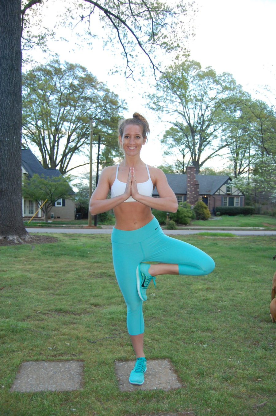Tree Pose Front View Thigh Yoga