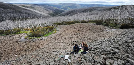 Rough Creek where five females with young were caught last December. Image | Andrew Sheargold, Canberra Times