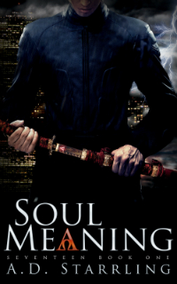 Soul-Meaning Cover