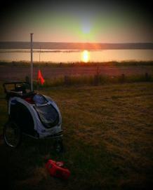 bike cart