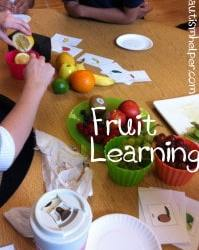 Exploratory Learning with Fruit