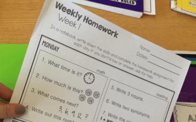Year Long Resource: Leveled Homework