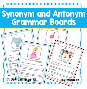 Synonym and Antonym Grammar Boards