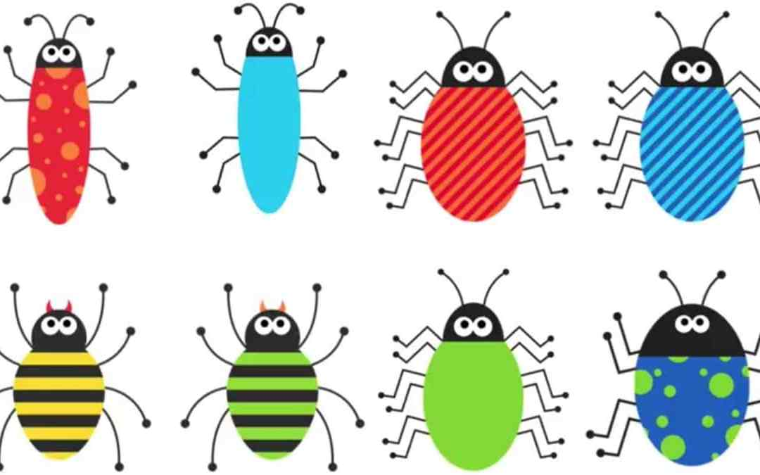 Whats Bugging You? Feature and Function Adapted Book