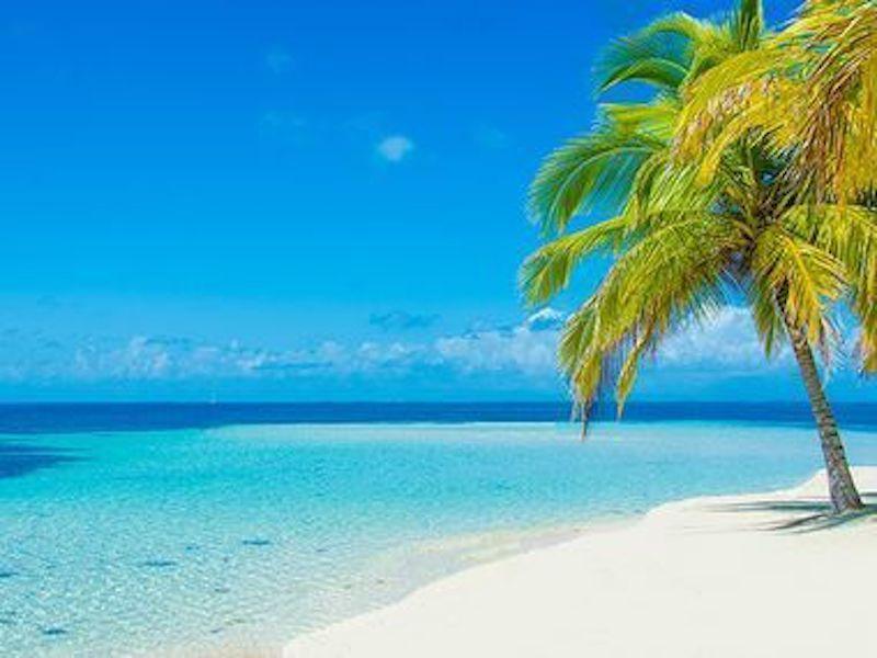 If I Were On a Teacher Island…
