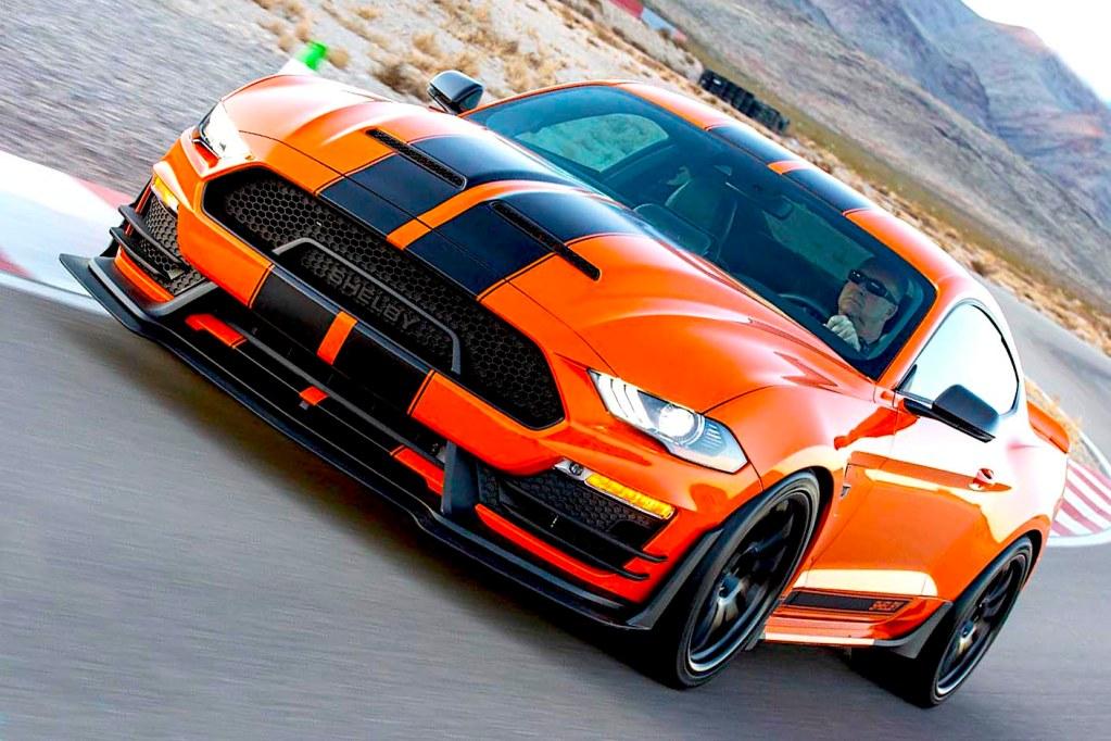 Carrol Mustang