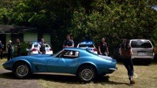 McGarrett's Girlfriend Catherine Rollins' 1973 Corvette