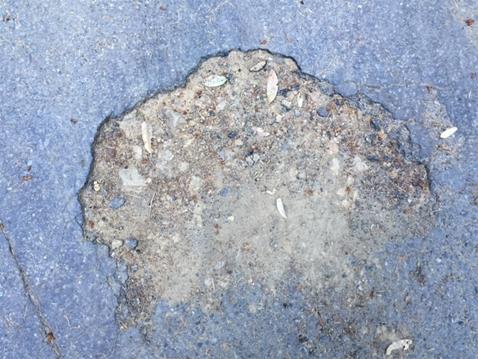 PotholeD