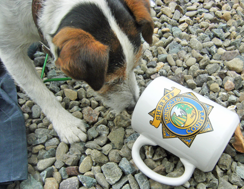 dogwithcup