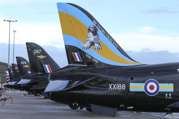 Hawk Special Tail